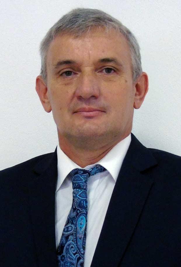 DOBRIN Virgil Nicolae - Viceprimar